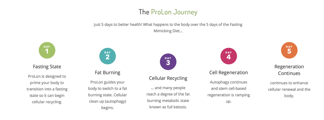 the prolon journey